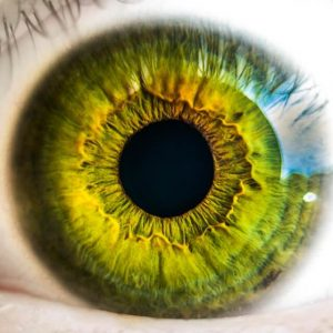Eye Movement Desensitisation and Reprocessing (EMDR)